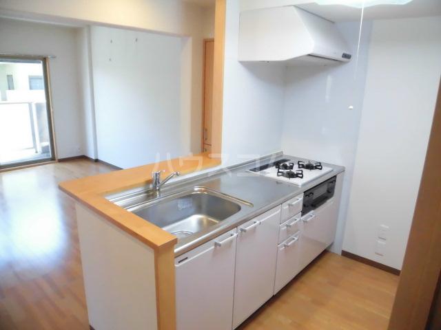 西斗 102号室のキッチン