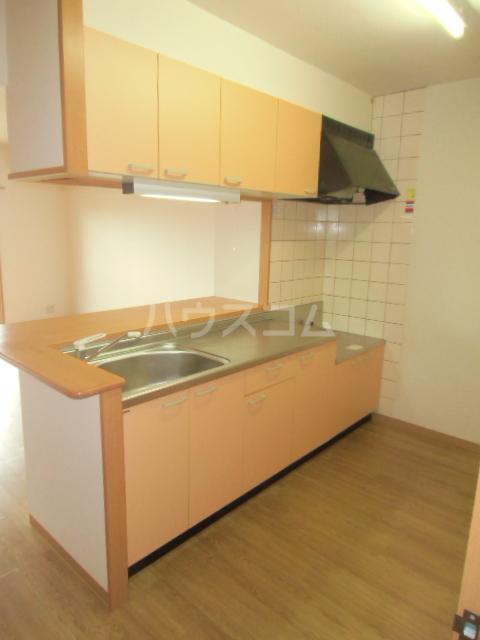 アイヴィ 102号室のキッチン