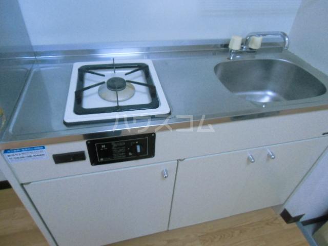 ヒルズM&O 207号室のキッチン