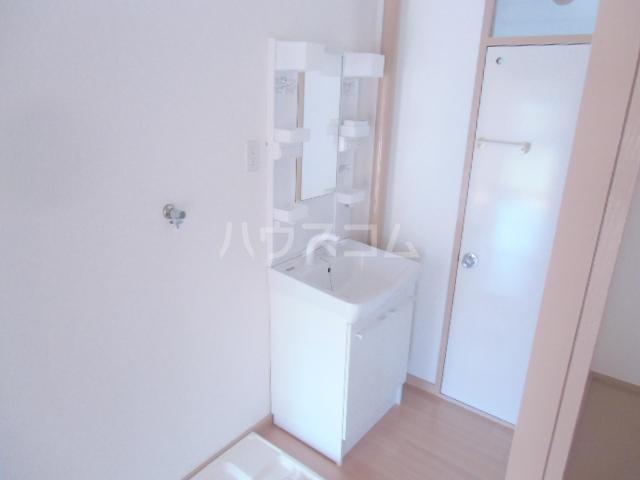 ドミ美 205号室の洗面所