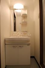ルースヤハタB 203号室の洗面所