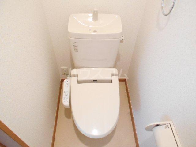 カーサ・フジ 202号室のトイレ