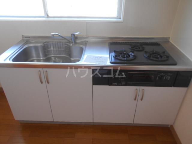 サンヒルズ太田南 202号室のキッチン