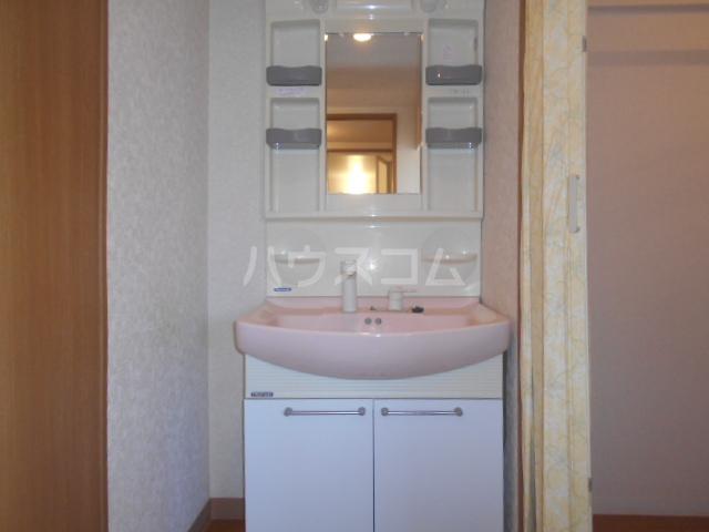 サンヒルズ太田南 202号室の洗面所