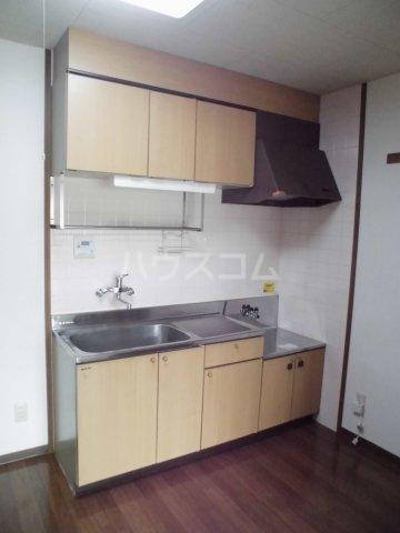 レジデンス・ラ・セーヌ 202号室のキッチン