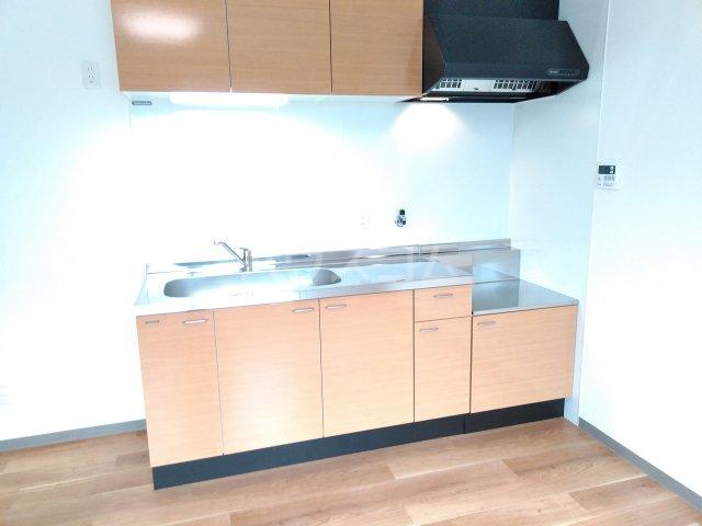 ベルビュー太秦 102号室のキッチン