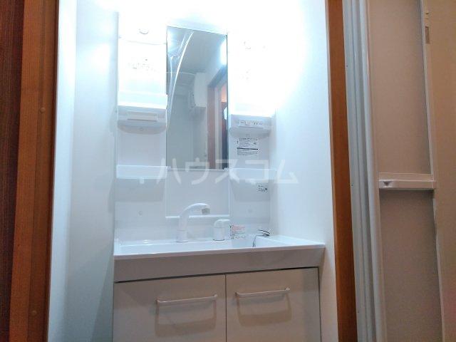 ベルビュー太秦 102号室の洗面所