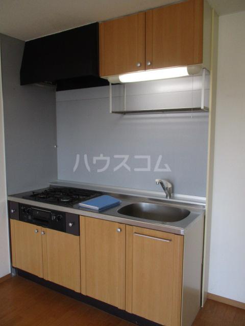 ジェミニパレス EAST 201号室のキッチン