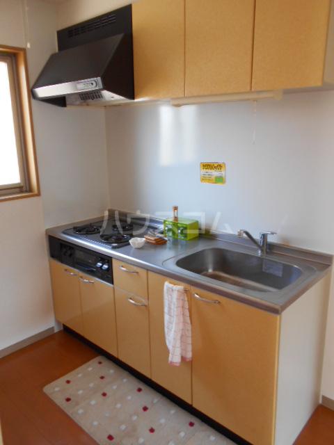 ハイツBF Ⅰ 202号室のキッチン