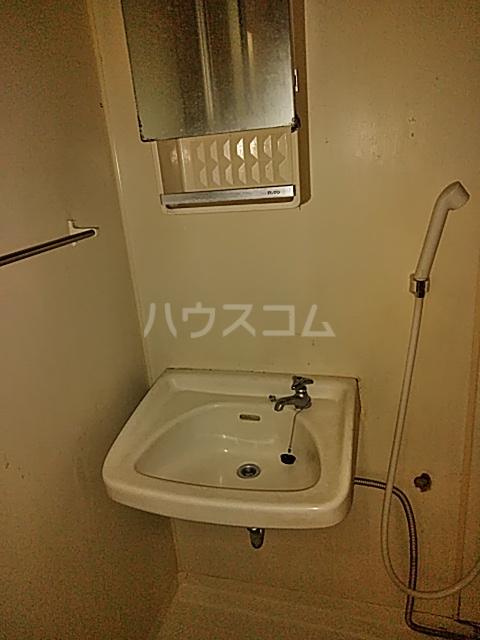 ハイグレード峯岸Ⅱ 203号室の洗面所