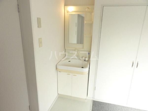 エミーハイツ 202号室の洗面所