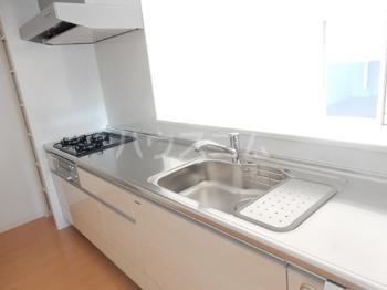 Sophia Garden博多 301号室のキッチン