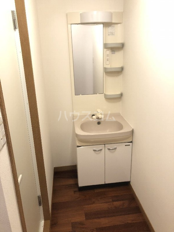 シャングリラ風 207号室の洗面所