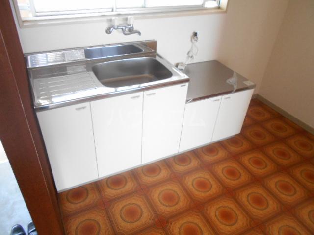 ニューサンシャインホリコシ 303号室のキッチン