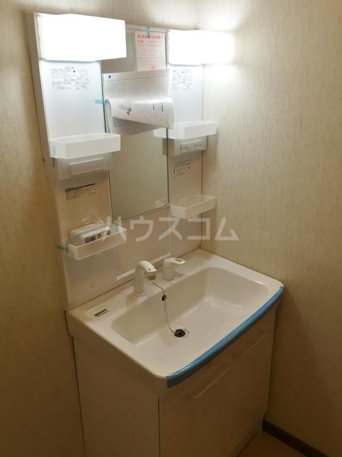 ツインビラスワンA 202号室の洗面所