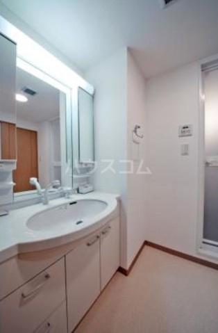 ルミエール中町 303号室の洗面所
