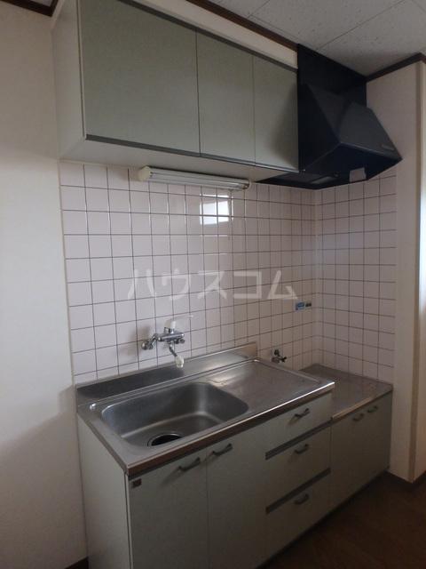 ロズマン・ジュネス 206号室のキッチン