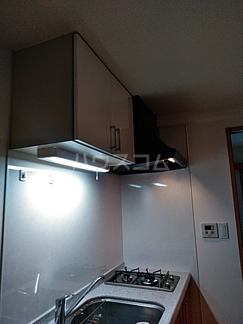 Alta Todoroki 202号室のキッチン