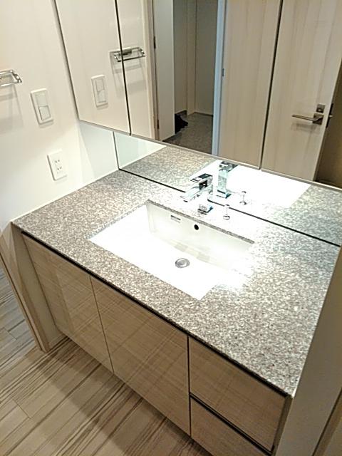 パークシティ武蔵小杉 ザガーデンタワーズ 3402号室の洗面所