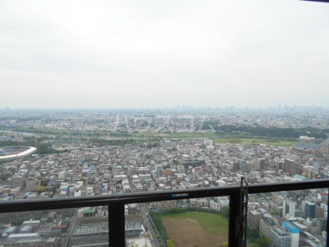 パークシティ武蔵小杉 ザガーデンタワーズ 4909号室の景色