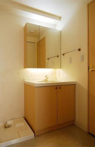 レジディア自由が丘 0101号室の洗面所