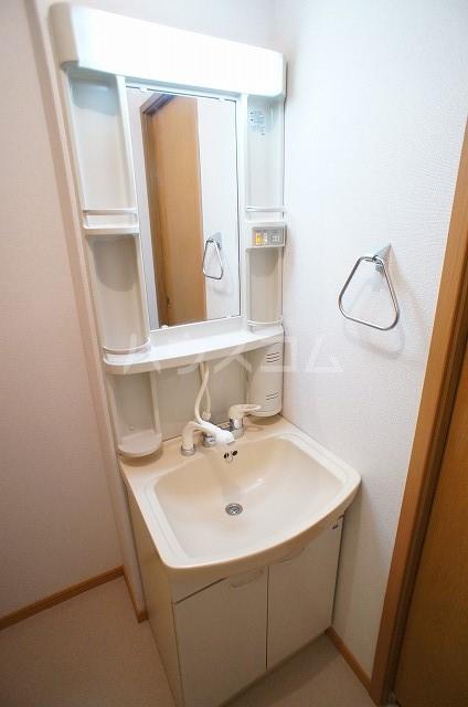 パークウッドB 01040号室の洗面所