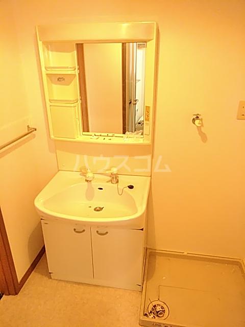 グランドゥールH 03030号室の洗面所