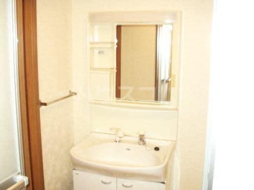 グランドゥールH 03040号室の洗面所