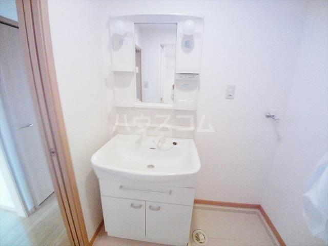 ルル-ディ フヨ 03020号室の洗面所