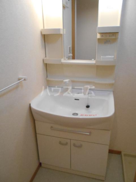 アルカディアⅡ 01030号室の洗面所