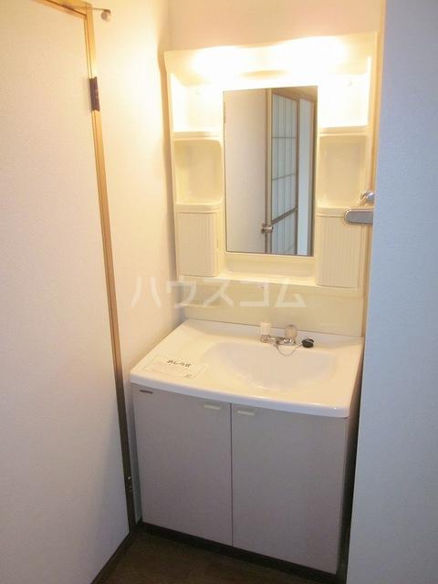 セカンドコアラ 02010号室の洗面所