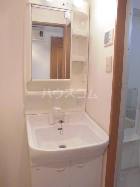 ビオラ・パラッツォ 06010号室の洗面所