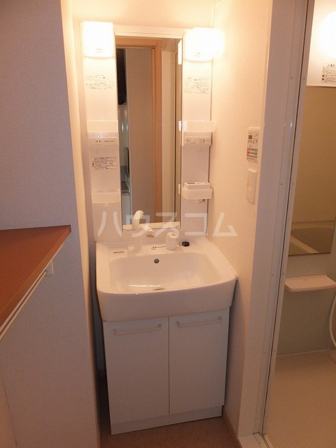 Tクレスト 01070号室の洗面所