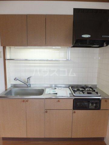 リバーパーク弐番館 02020号室のキッチン
