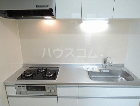 ミル グルージャ 02010号室のキッチン