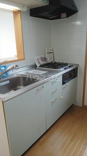 リーベンスヴェルディヒ 02010号室のキッチン