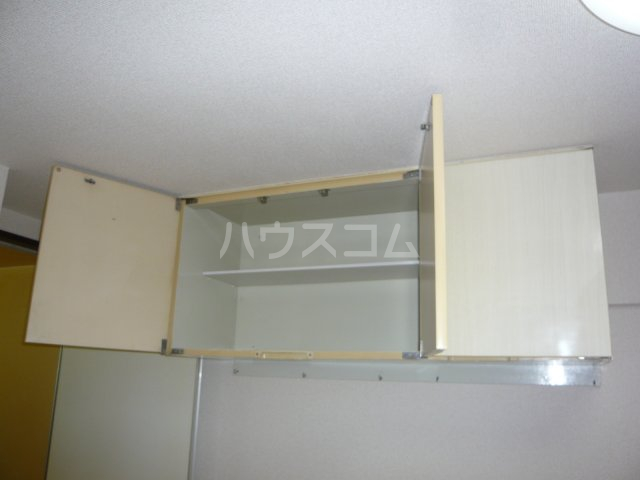 メゾン・ド・カナリ 0316号室の収納