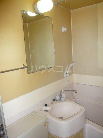 メゾン・ド・カナリ 0316号室の洗面所