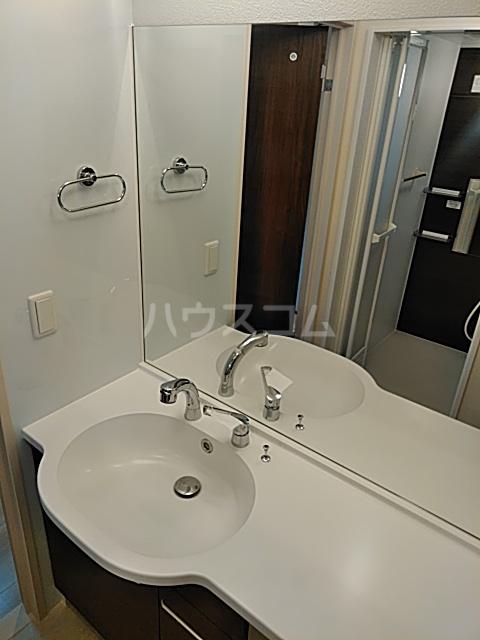 D-room思川マロン G 203号室の洗面所