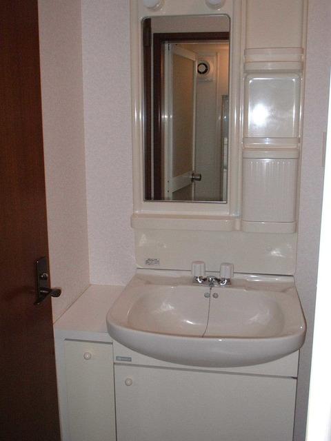 ボワァール本駒込の洗面所