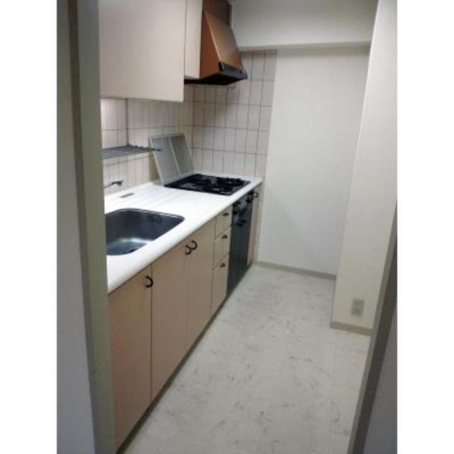 パーク・ノヴァ目黒不動前 202号室のキッチン