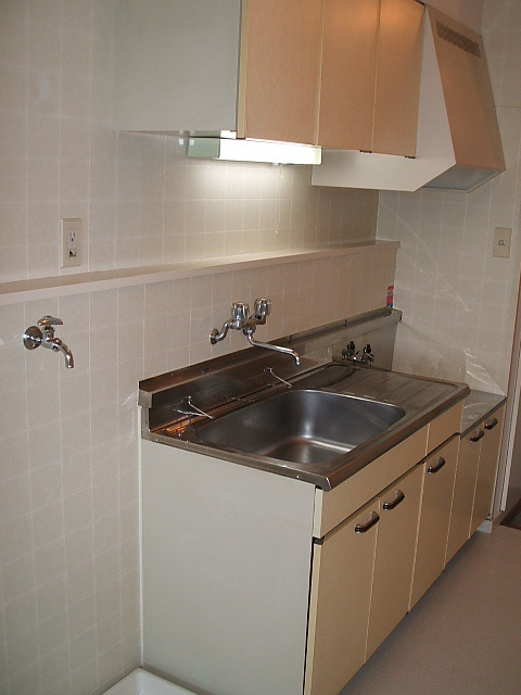 ハイツ伊藤 202号室のキッチン