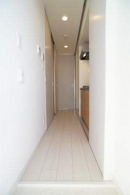 リブリ・カーサ新白岡 206号室の玄関