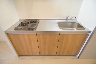 リブリ・カーサ新白岡 206号室のキッチン