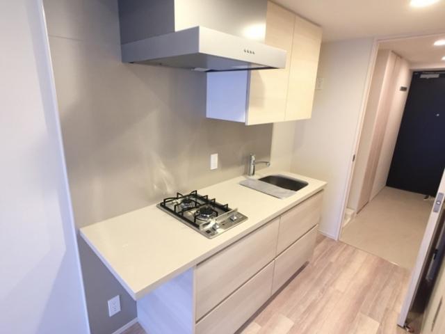 ザ・パークハビオ目黒 1207号室のキッチン