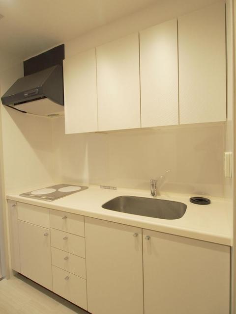 恵比寿ガーデンテラス弐番館 1218号室のキッチン