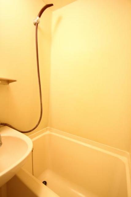 ジョイフル浦和 204号室の風呂