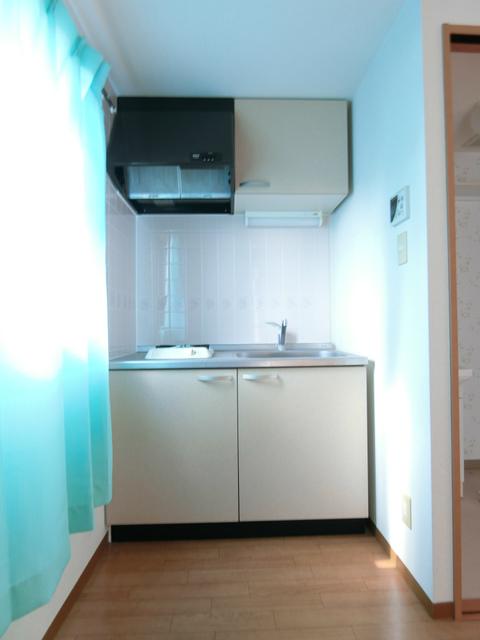 パレス・ユートピア 203号室のキッチン