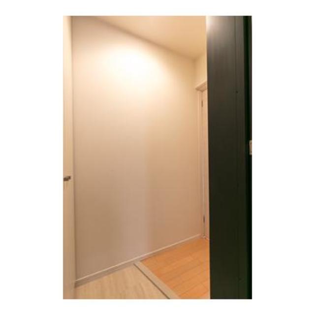ルミエール田園調布 301号室の玄関