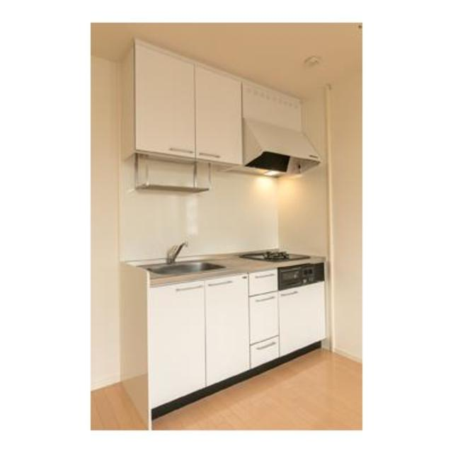 ルミエール田園調布 301号室のキッチン